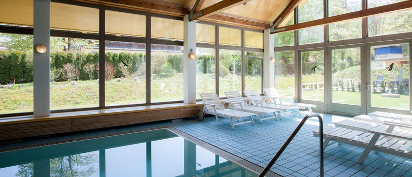 BAZEN, VRT - INDOOR POOL, GARDEN.jpg